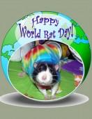 world-rat-day